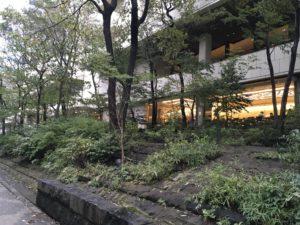 京王プラザホテル 外側