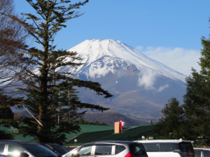 静岡 富士サファリパーク